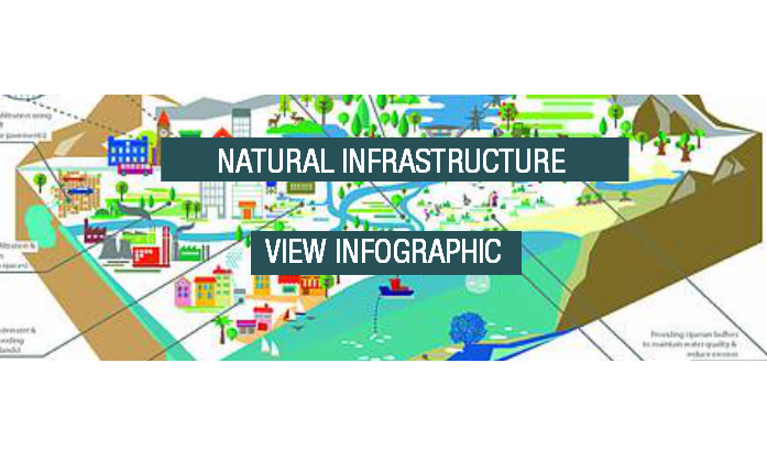 Natural Infrastructure Download Button Transparent