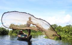 Fisherfolk fishing with castnet at Balot CPA in Boeung Chhmar