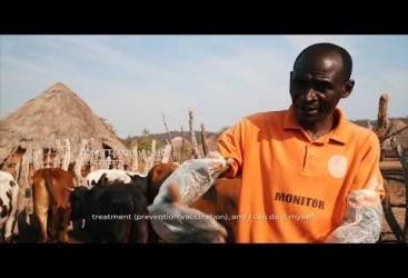 IUCN SUSTAIN implementation in Mozambique by ADPP