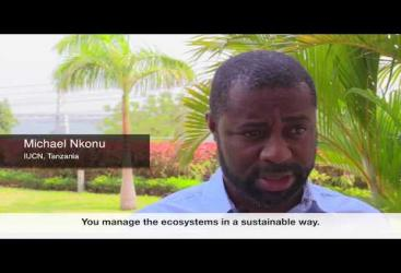 SUSTAIN: Michael Nkonu explains inclusive green growth