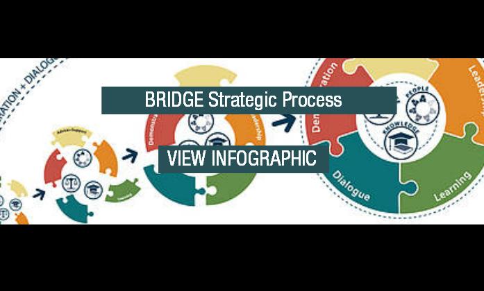 BRIDGE Strategic Process Download Button Transparent