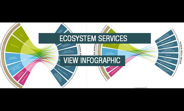 Ecosystem Services Download Button Transparent